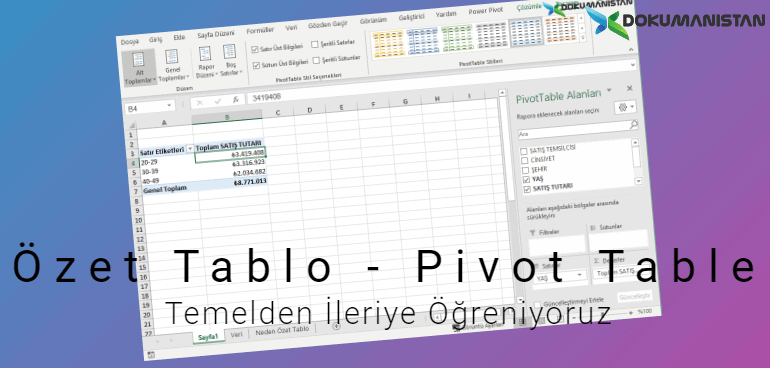 Özet Tablo Pivot Table Serisi