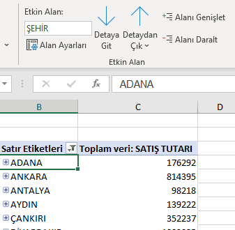 PivotTable Analizi Etkin Alan