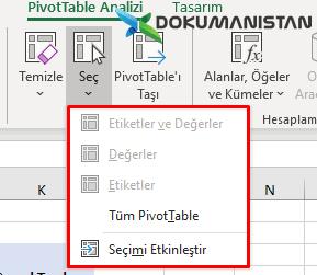 PivotTable Analizi Seç Alanı
