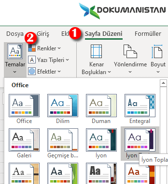 Excel Temalar